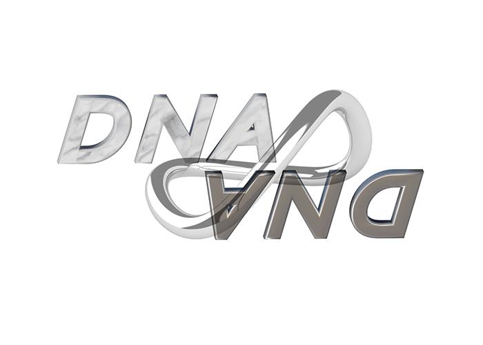 DNA -best jewelry designers